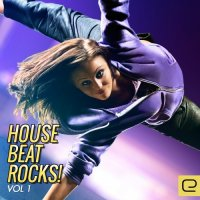 VA - House Beat Rocks!, Vol. 1 (2015) MP3