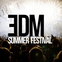 VA - EDM Summer Festival (2015) MP3