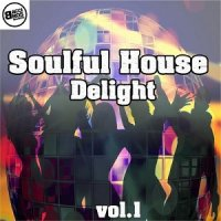 VA - Soulful House Delight Vol 1 (2015) MP3