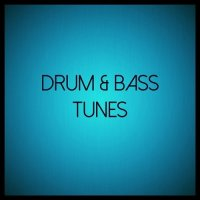 VA - Drum and Bass Tunes (2015) MP3
