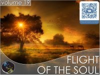 VA - Flight Of The Soul vol.19 (2015) MP3