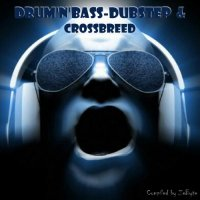 VA - Drum'N'Bass-Dubstep & Crossbreed [Compiled by Zebyte] (2015) MP3