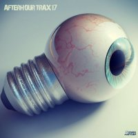 VA - Afterhour Trax 17 (2015) MP3