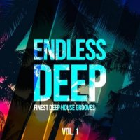 VA - Endless Deep: Finest Deep House Grooves Vol. 1 (2015) MP3