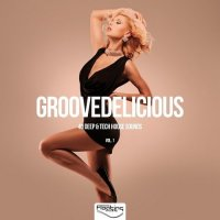 VA - Groovedelicious Vol 1 40 Deep and Tech House Sounds (2015) MP3