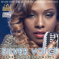 VA - Silver Voice: RnB Dolce Boom (2016) MP3