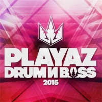 VA - Playaz Drum & Bass 2015 (2016) MP3