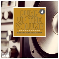 VA - Pump up the Volume - Electro House Selection Vol. 4 (2016) MP3