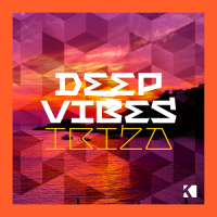 VA - Deep Vibes - Ibiza (2016) MP3