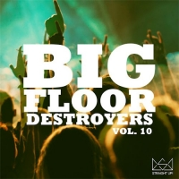 VA - Big Floor Destroyers Vol. 10 (2016) MP3