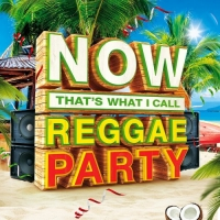 VA - Now Thats What I Call Reggae Party (2016) MP3