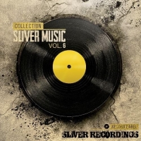 VA - Sliver Music Collection Vol.6 (2016) MP3