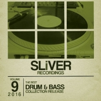 VA - SLiVER Recordings: The Best Drum & Bass Collection Vol.9 (2016) MP3