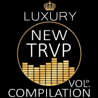VA - Luxury New Trap Compilation Vol.IX (2016) MP3
