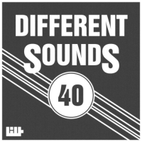 VA - Different Sounds Vol.40 (2016) MP3