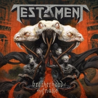 Testament - Brotherhood Of The Snake (Limited Edition) (2016) MP3