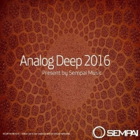 VA - Analog Deep (2016) MP3