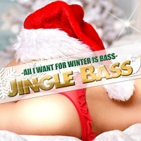 VA - All I Want For Winter Is Bass (2016) MP3