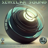 VA - Similar Sound: Winter Drum And Bass (2017) MP3