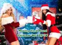 VA - Amazing Vocal Sound - Christmas Gift (2016) MP3