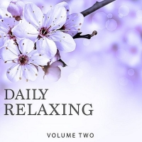 VA - Daily Relaxing Vol.2 (Chill Out & Ambient Music In Perfection) (2017) MP3