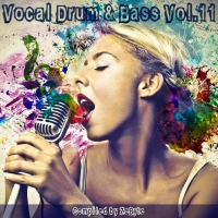 VA - Vocal Drum & Bass Vol.11 [Compiled by Zebyte] (2017) MP3