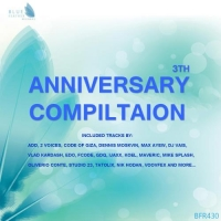 VA - Blue Feather Records 3th Anniversary Compilation (2017) MP3