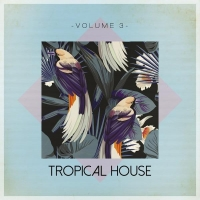 VA - Tropical House Vol. 3 [Tronic Soundz] (2016) MP3