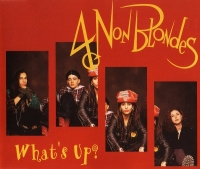 4 Non Blondes - What's Up? (1993) MP3