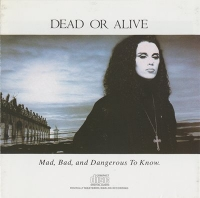 Dead Or Alive - Mad, Bad And Dangerous To Know (1986) MP3