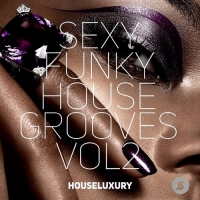 Сборник - Sexy Funky House Grooves (2017) MP3