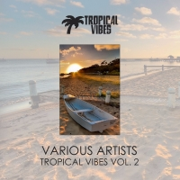 VA - Tropical Vibes vol.2 (2018) MP3