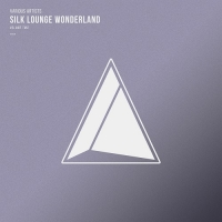 VA - Silk Lounge Wonderland Vol.02 (2018) MP3