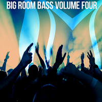 VA - Big Room Bass Vol.4 (2018) MP3