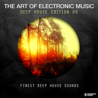 VA - The Art Of Electronic Music: Deep House Edition Vol.6 (2018) MP3