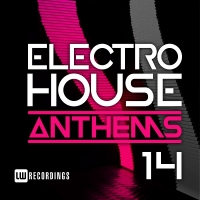 VA - Electro House Anthems Vol.14 (2018) MP3
