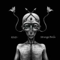 Rind - Strange Birds (2018) MP3