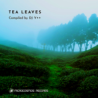 VA - Tea Leaves. Compiled by DJ V ++ (2019) MP3