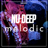 VA - Nu Deep Melodic (2019) MP3