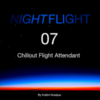 VA - Nightflight 07 Chillout Flight Attendant: Presented By Kolibri Musique (2019) MP3