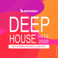 VA - Deep House Hits 2020 [Compiled by DJ Combo] (2020) MP3
